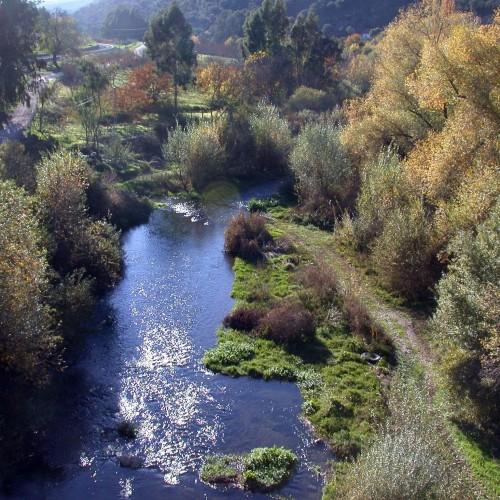 river-guadiaro